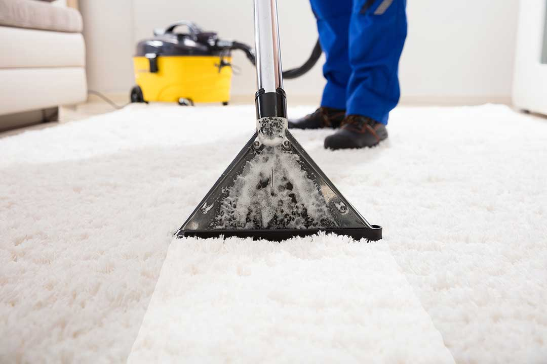 Carpet Cleaning New Jersey | Same Day